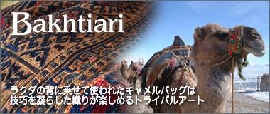 Camel Bag Horgin